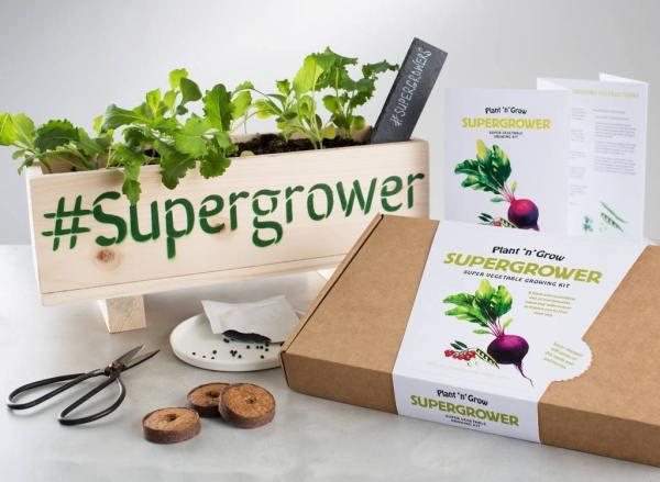 Superfood Seed Growing Kit