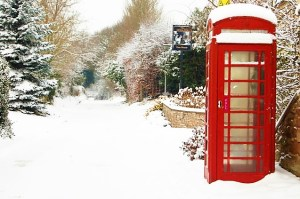 protect a garden from snow