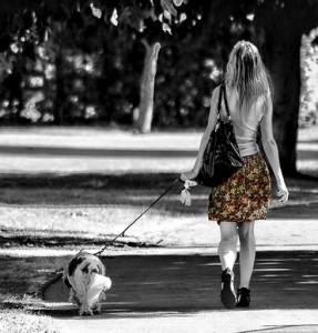 moneymagpie_how-to-make-money-if-you're-under-18_dog-walk