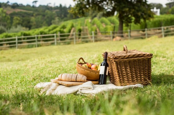 Summer picnic in a field