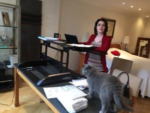 Varidesk and cat! photo: Sarah Lockett