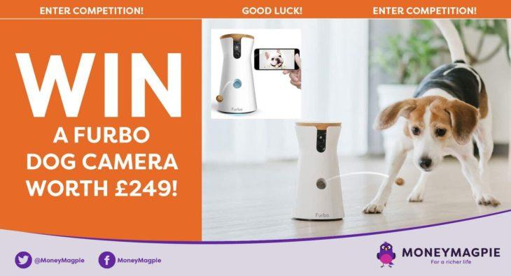 Win a Furbo dog camera worth £249