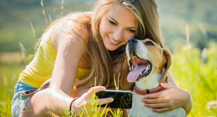 Use social media to make money from your pet