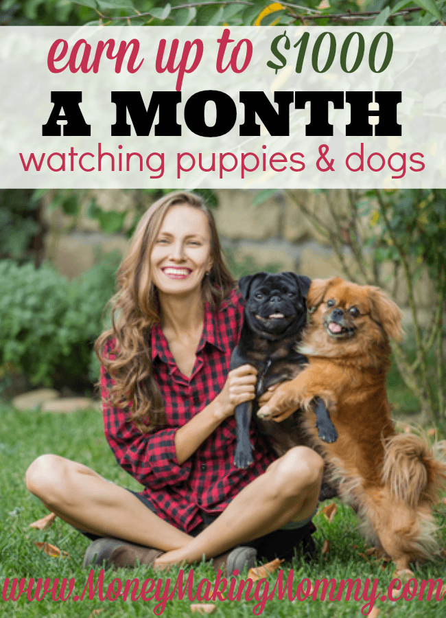 Earn Up To $1000 a Month Watching Puppies
