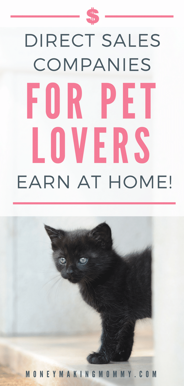Pet Home Party Business