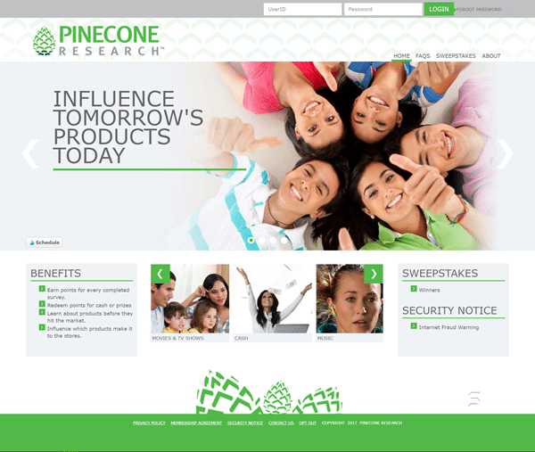 Pinecone Research Surveys