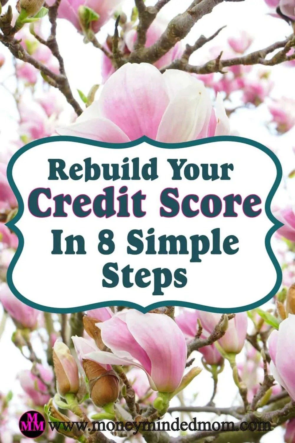 Rebuild Your Credit Score In 8 Simple Steps