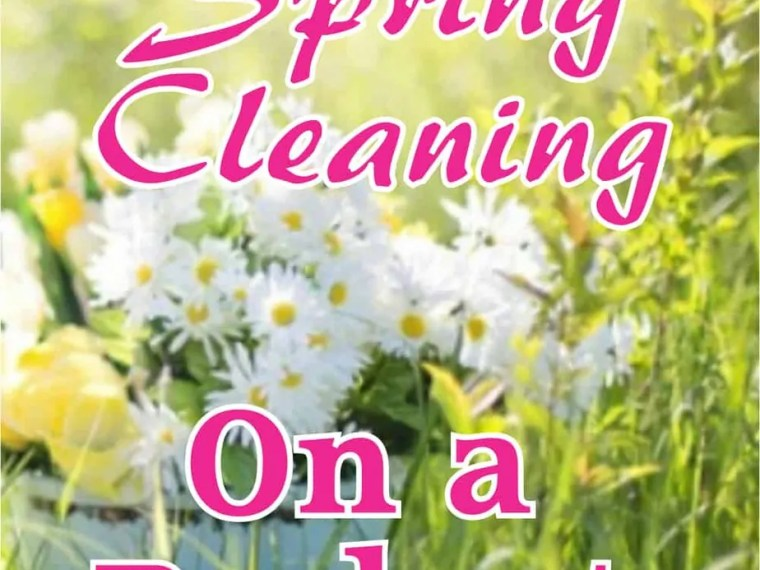 5 Tips for Spring Cleaning on a Budget. It may seem weird to some people but spring cleaning can get expensive. Cleaning products, special equipment, disposal fees for electronics, the list goes on. Read on for some budget friendly spring cleaning tips.