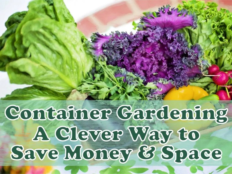 Container Gardening - A Clever Way to Save Money and Space ~ Gardening and growing your own food is a great way to save money and you don't need a huge space either. Read on to learn all the ins and outs of container gardening.