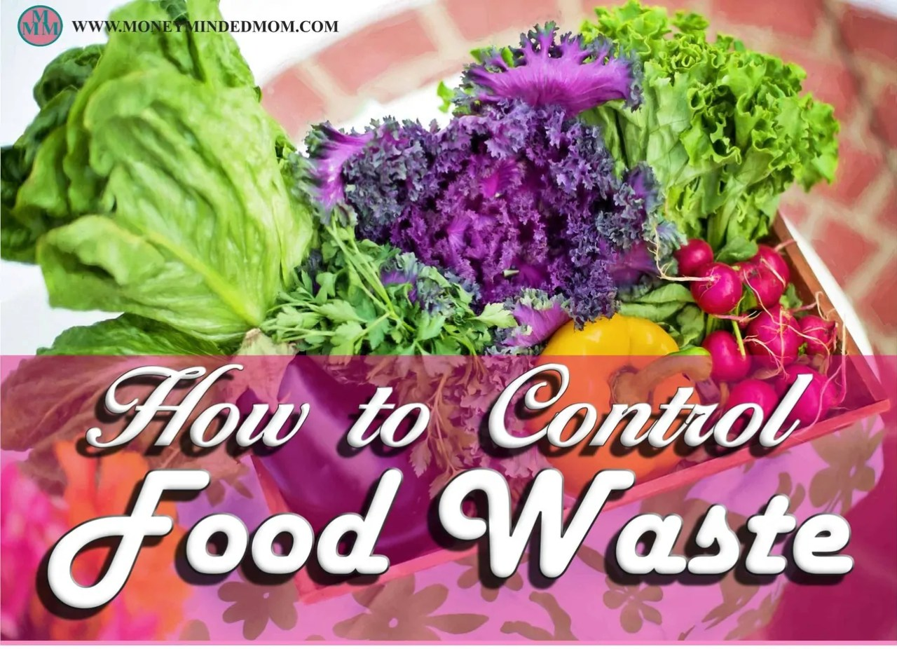 ~How to Control Food Waste~ Food waste is a huge problem all over the place. You see it everyday at home. You may be cleaning out your fridge of unused left overs. It may be while you are cleaning the dishes up after supper and scraping a bunch of extra food into the trash. Or it could even be when you visit a store right before they close and see food going into the dumpsters. Food waste is a big problem everywhere.