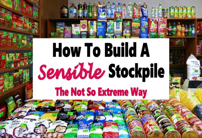 How To Build a Sensible Stockpile ~ The Not So Extreme Way ~ Building a stockpile of items you use regularly is a great way to save money and you don't have to go to extremes to save money and help you stay on budget. You can create a sensible stockpile without going overboard, read on to learn how. #money #grocerysaving #groceries #savemoney #finance