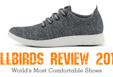 shows an allbird shoe and Allbirds review text in orange