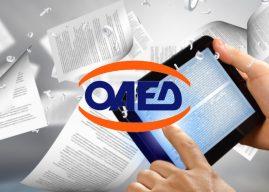 ΟΑΕΔ: Αναρτήθηκαν οι προσωρινοί πίνακες κατάταξης για την πρόσληψη έκτακτου εκπαιδευτικού προσωπικού στα 30 ΙΕΚ