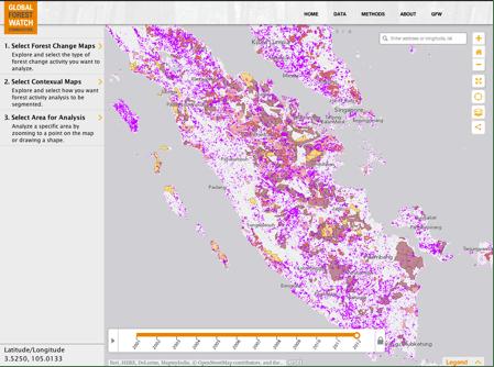 contoh tampilan peta pada kebun sawit dari anggota RSPO (warna abu-abu) dari website GWF-Commodities WRI. Foto : WRI