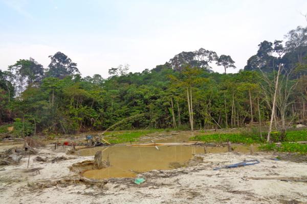 Ancaman lain bagi Hutan Tumbang Bahanei tamang emas yang dilakukan oleh orang-orang yang datang dari luar desa mereka. Warga Bahanei terus berpatroli  mengurangi kerusakan hutan dan pencemaran air dari tambang emas ini. Foto: Indra Nugraha