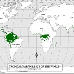 Diagram Of A Tropical Forest Sonos System Wiring Location Rainforests World Rainforest Map