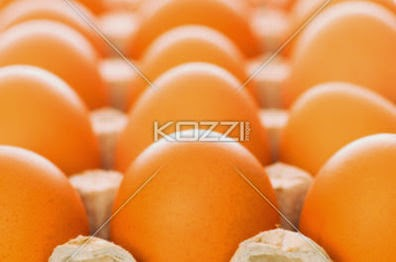 Many Eggs With Shallow Depth Of Field