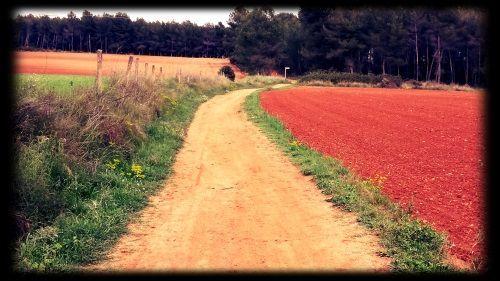 primera entrada blog camino con marco