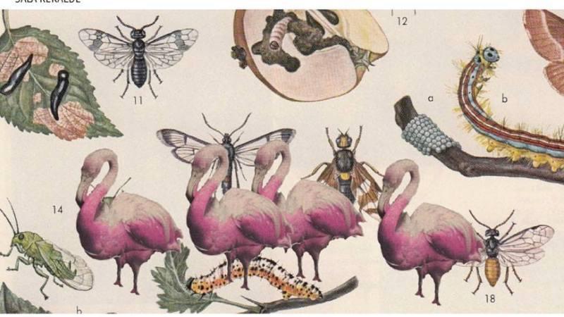 Until 24th June 2015 Monika K. Adler in TIME is Love.8 [Show 4] KALAO PANAFRICAN CREATIONS.