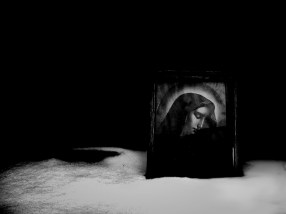 06. Coyote_A Film_Sequence. VI Monika K. Adler