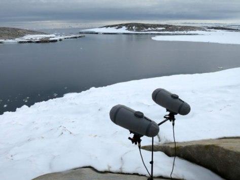 1dpa-in-the-antarctic-1