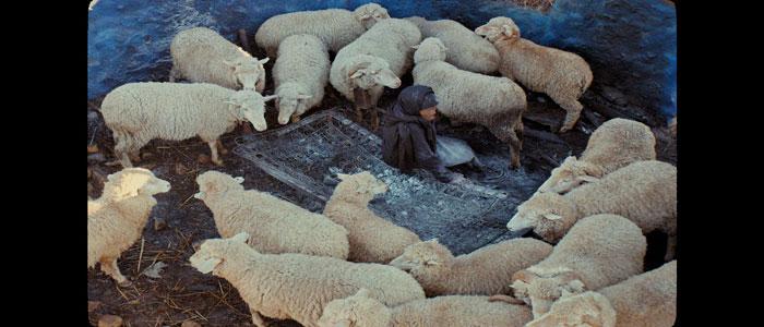 Il film candidato al Sundance This Is Not a Burial,  It's a Resurrection montato su DaVinci Resolve
