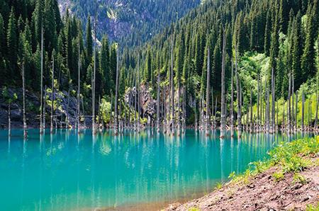 liqeni kaindy