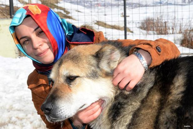 BITLIS, TURQUÍA- La nueva iniciativa del alcalde de Anatolia para mantener a los residentes calientes durante este invierno incluye la entrega de abrigos para los animales para afrontar el frío