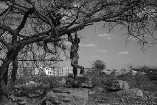 Un niños somalí juega con un árbol [Ty Faruki]