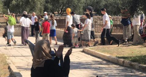 Un grupo de colonos judíos irrumpe en el complejo de la mezquita de Al-Aqsa [Masjid al-Aqsa Foundation/Anadolu Agency]