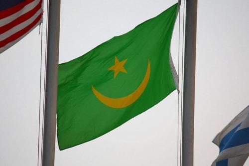 Los primeros resultados de la encuesta en Mauritania muestran que…