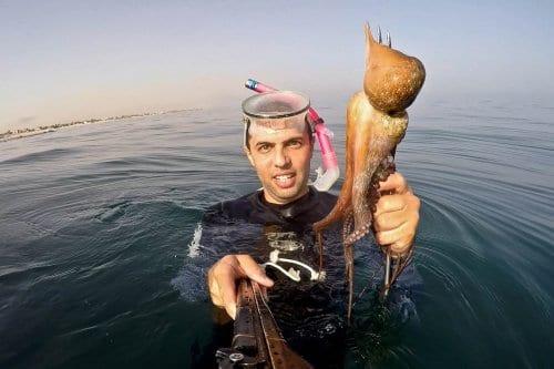 Un fotógrafo de MEMO comienza a documentar la vida marina…