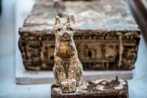 """Egipto: Encuentran más de 500 animales en el """"cementerio de…"""