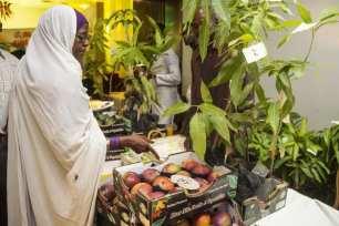 Los productores de mango exhiben más de 30 tipos de mango durante el 25º Festival del Mango en Jartum, Sudán, el 3 de julio de 2021 [Mahmoud Hjaj/Anadolu Agency].