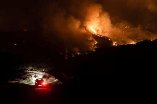 Cuatro muertos en un incendio forestal en Chipre