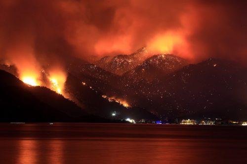 Los incendios forestales siguen ardiendo en una Turquía azotada por…