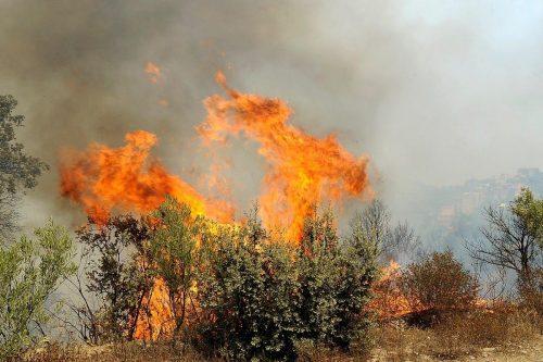 Argelia sofoca los incendios forestales en la provincia de Tizi…