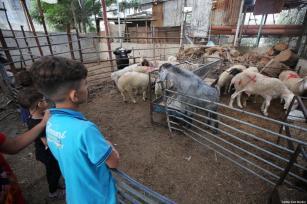 Crianças palestinas em Gaza durante o Eid ul Adha, segundo feriado anual do Eid , em 31 de julho de 2020 [Mohammad Asad/Monitor do Oriente Médio]