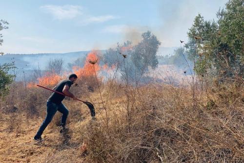Colonos israelenses atacam agricultores palestinos colhendo azeitonas na aldeia de Burin, ao sul da cidade de Nablus, no norte da Cisjordânia, em outubro de 2019