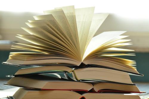 Livros [ Foto pixabay]