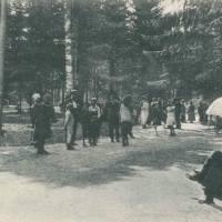 Istorie. Cine au fost nemții din Bucovina?