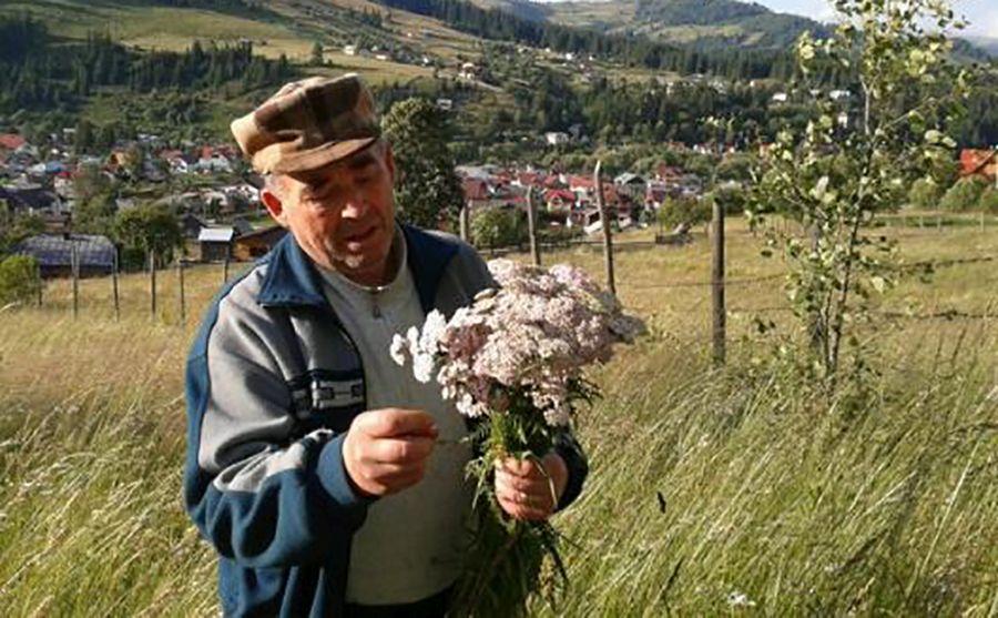 """Ion Cruceanu și """"Iarba verde de acasă"""""""