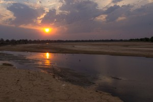 Abendstimmung im South Luangwa NP.