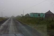 Gegen Abend erwartet uns im Gebiet der ehemaligen Transkei jedoch Nebel und Regen.