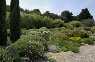 amenager jardin mediterraneen