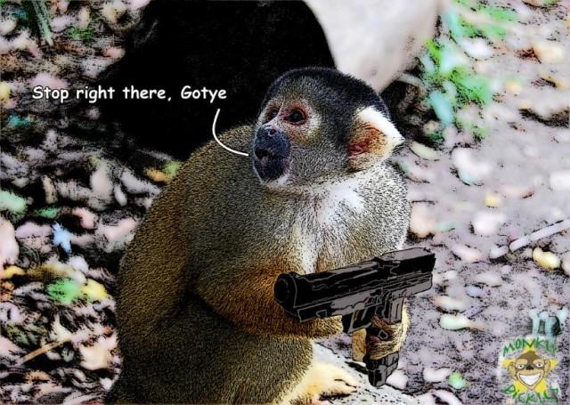 Meme monkey gun gotye logo.