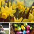 Last minute Easter breaks in Cornwall