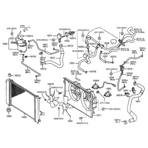 Toyota OEM Radiator Hose – Celica All 0005 – Lower