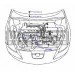 Toyota OEM Wire Harness