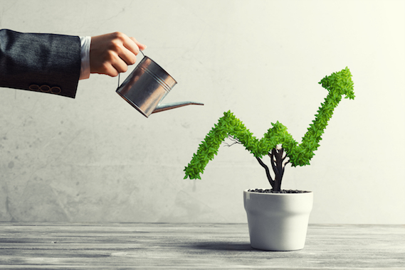 Gallup Q12 Employee engagement Learn and grow